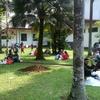 ❮旅❯東洋最大の植物園、ボゴール植物園に行ってきた~ジャカルタinインドネシア旅行記⑥