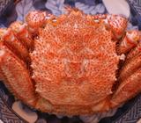 リアル竜宮城!「船長の家」がすごい! 食べきない量の海の幸が並ぶ宿!