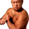 内藤 just tap out@3.11 ニュージャパンカップ 観戦記(新日本プロレスワールド)