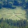 酒田市・大沢地区の山には、Google Mapsの航空写真でも見える「大」文字がある。その草刈りに密着。翌日の大沢地区大運動会で、その「大」文字が綺麗に映えた。