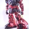MG 1/100 シャア専用リックドム(限定版)