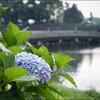和田倉噴水公園をぶらり