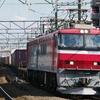 11月3日撮影 武蔵野線 新座駅 貨物列車を撮影 【EH500-901号機 クマイチの94ㇾ】