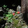 山形日記 ① 若松観音と逆回しの立石寺