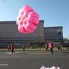 DCさくら祭り~パレード~