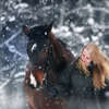 「マリーの馬」~詩を書くときの心得