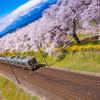 春の到来と将来の展望