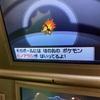 色違い〜ヒノアラシ〜