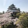 和歌山城で花見…「注意事項!」とか…