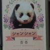 シャンシャン(香香) に会いに行く 上野動物園