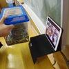 休校×ICTでやれたこと No.5 「一人1台iPadで全校リモート授業」(さとえ学園小学校)