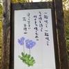 谷川連峰の最も西に位置する花の百名山『平標山』へ