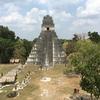 グアテマラ ティカル遺跡観光 「グランプラザ(1、2号神殿)」2号神殿頂上より