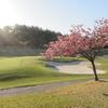 八重桜ゴルフ