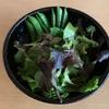 コトノキ農園の「季節のお野菜セット」