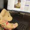 Kimono Flea Market ICHIROYA's News Letter No.851