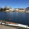 【イベント】東京大学漕艇部主催・総長杯レガッタに参加してきた。1964年東京オリンピックの会場でボートを漕げるチャンス!