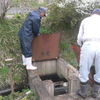農村の共同作業