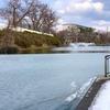 秋田でもいち早い春の訪れ〜千秋公園のお堀だけは薄氷〜iPhoneXSとフォト画像⑨