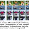 Random Erasing Data Augmentation