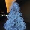イスラム教の国 インドネシアでもクリスマス・ツリーが一杯飾られるようになりました。