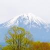 富士山に行ってきました。登らず麓まで、ですが。