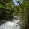 奈良県天川村の秘境みたらい渓谷をハイキング。でも長雨で天ノ川は増水していた。