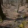 孫猿遊山「奥物部の森」 森遊び