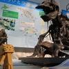 足寄町 ほかに類を見ない面のある、足寄動物化石博物館