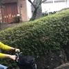 伊豆高原へプチ旅行🚃
