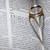 米ユタ州のレズビアン、フラッシュモブで彼女にプロポーズ