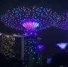 シンガポール旅行記サプライズ3  ガーデンズ・バイ・ザ・ベイ は夕方から(Youtube映像付)