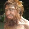 ネアンデルタール人と人類(1)