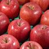 【AAPL】バフェットはなぜアップルに投資をしたのかを考える