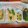 【エコ活動】【レシピ】大豆とハーブから作る手作り納豆に成功!~ヨーグルトメーカーなしのエコ作戦~