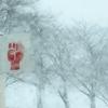 雪国ならではの標識