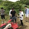 佐久島でサツマイモを特産品にするために、若者の力が必要だって話