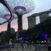 シンガポール旅行♪