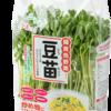 豆苗(とうみょう)で家庭菜園体験 2日で収穫できて簡単・手軽 食育におすすめ