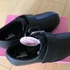 【シニアさんぽ】10キロさんぽに合う靴は?