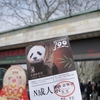 上海動物園にパンダを見に行ってきました(と、続・上海の花粉症)