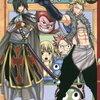 FAIRY TAIL (フェアリーテイル)31巻 OVA  特装版 感想