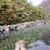 栃木県 奥那須温泉 大丸温泉旅館 宿泊記 野趣溢れる露天風呂で気軽に混浴が楽しめる宿