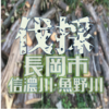 新潟県の長岡、越路、十日町、堀之内で無料で伐採ができる方を募集しています