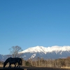 雪景色の御嶽山(御岳山)・2021年3月23日②