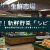 愛知県岡崎市で激安!新鮮野菜が買えるスーパー「シビコ」地元民に長年愛されていてオススメ!