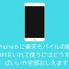 iPhone6に楽天モバイルの格安SIMをいれて使うにはどうすればいいか全部おしえます