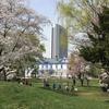 春の中島公園へと足を運びました。今日は閑話休題