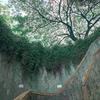 シンガポール【Fort Canning Park〜フォートカンニング公園〜】行き方