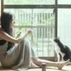 ★1364鐘目『愛猫・レフくんが漫画原作映画『濃紫の葡萄』に出演しているでしょうの巻』【エムPのイケてる大人計画】